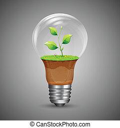 crecer, innovación