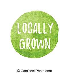 crecido, cartel, tarjeta, locally, ilustración, acuarela, escrito, fondo verde, logotipo