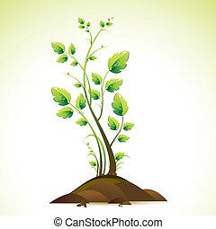 Creciendo árbol