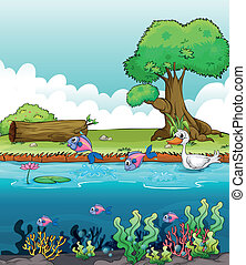 Criaturas marinas con un pato