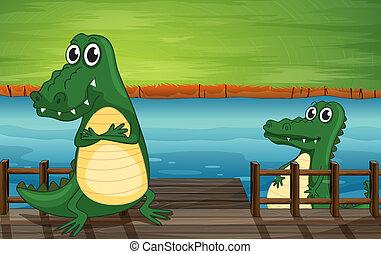 Crocodiles en el puente