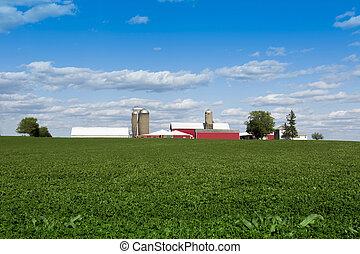 Crops en la granja