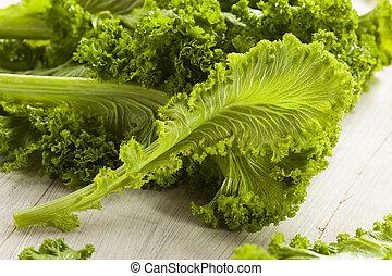crudo, orgánico, verde de mostaza