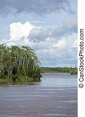 Cruzando en el río el Amazonas, en la selva tropical, Brasil
