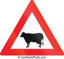 Cruzando ganado en Austria