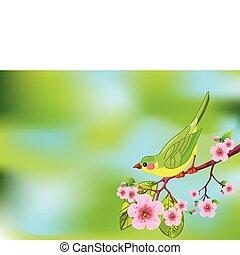 Cuartel de pájaro de primavera
