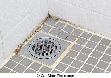 cuarto de baño, molde