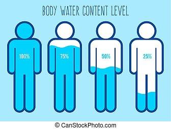 cuerpo, agua, nivel, gráfico, contenido, humano