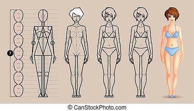 cuerpo femenino, lección, dibujo