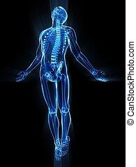 Cuerpo humano alzador