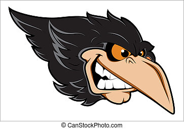 cuervo, enojado