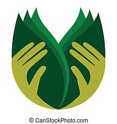 Cuidando las manos sosteniendo hojas.