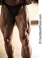 culturista, el suyo, actuación, muscular, muslo