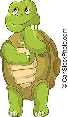 Curiosa tortuga. Pensando.