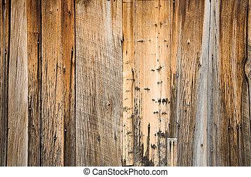 Curioso fondo de madera