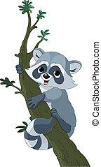 Curioso mapache de caricaturas en el árbol