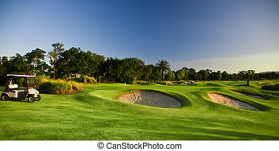 curso, cochecillos del golf