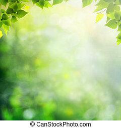Día de belleza soleado en el bosque, fondo natural abstracto