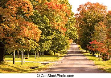 Día de otoño en el camino rural