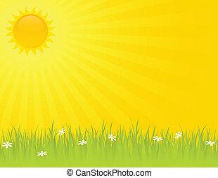 Día de verano soleado