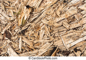 Daños de madera
