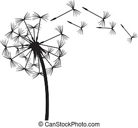 Dandelion en el viento