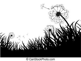 Dandelones flotantes