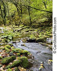 dartmoor, corriente