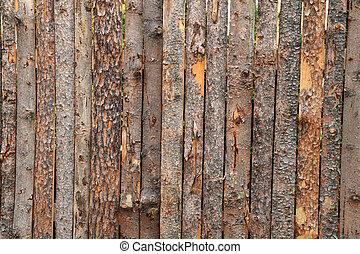 de madera, corteza, plano de fondo