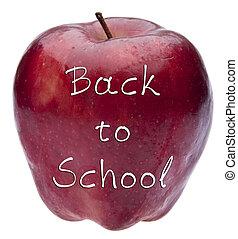 De vuelta al concepto escolar