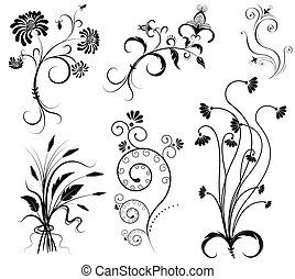 Decoración floral del vector en elementos gráficos negros