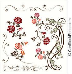 decoración, rosa, conjunto