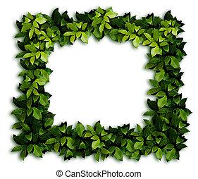 decoración, verde
