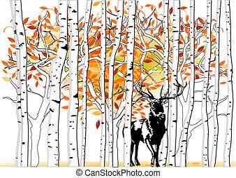 Deer en el bosque profundo
