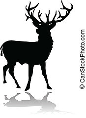 Deer silueta con sombra