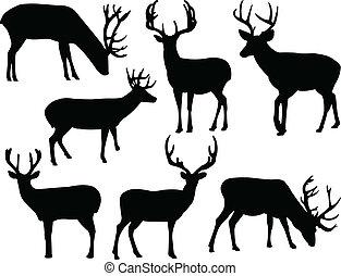Deers silueta