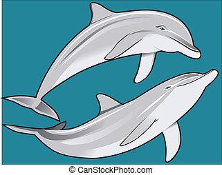 delfín, dúo