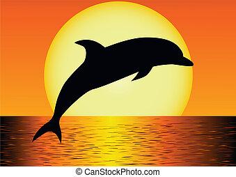 delfín, silueta