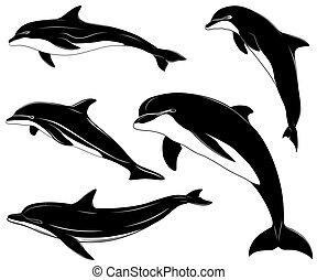 delfines, conjunto, colección, tatuaje