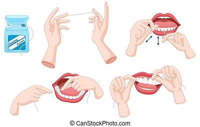 dental, cómo, uso, seda, conjunto