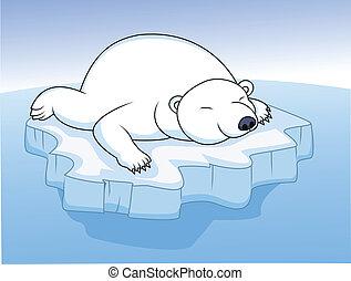 descansar, oso polar, hielo
