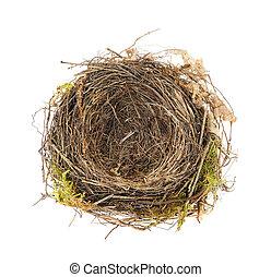 Detalle de nido de mirlo aislado en blanco