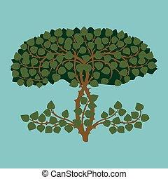 detalle, plantas, hojas, arbustos, arbustos, verde, exuberante, nature.