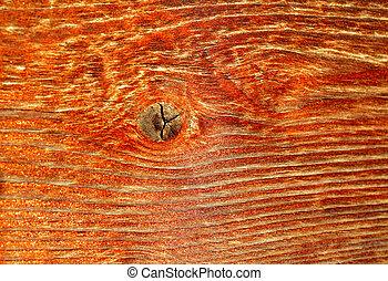 Detalles naturales de madera seca