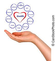 Diagrama de salud