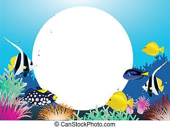 Diario de la vida marina