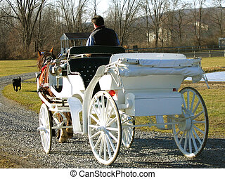dibujado, caballo, carruaje