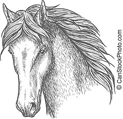 Dibujo de cabeza de caballo pura para el diseño deportivo equino