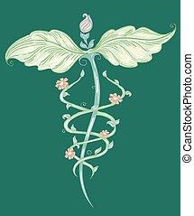 Dibujo de medicina alternativa