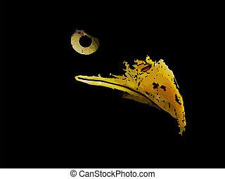 Dibujo gráfico de silueta de águila depredadora